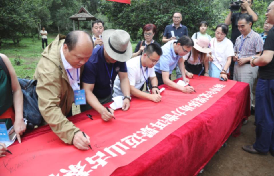 海外华媒代表签名支持古茶林申遗:天赐普洱,天佑澜沧