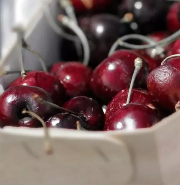 欧洲要求越来越严格 智利生鲜水果描向中国市场