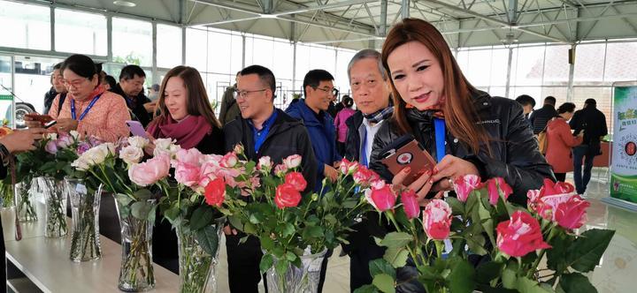 塞外兰州——行走中国 海外华媒高层2019甘肃行系列报道