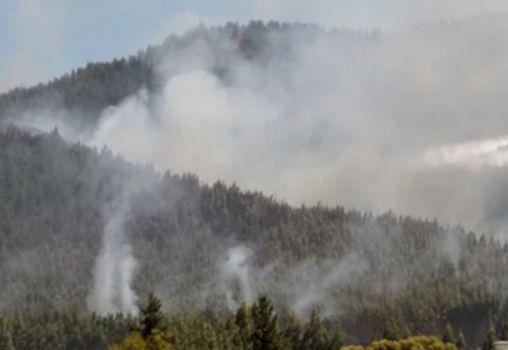 智利夏季高温将导致森林火灾频发