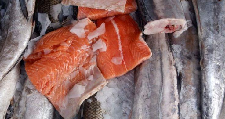 智利三文鱼饲料公司哄抬产品价格 被罚为7000万美元