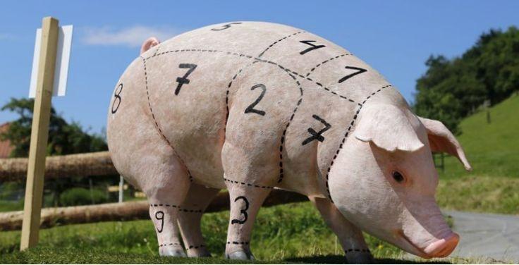 智利销售的猪肉在营养含量上都存在标签缺陷