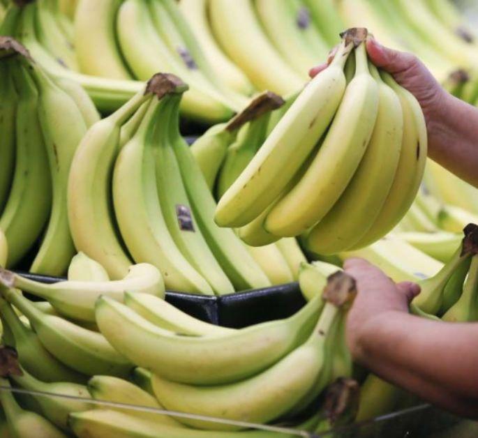 首批巴拉圭香蕉进入智利市场