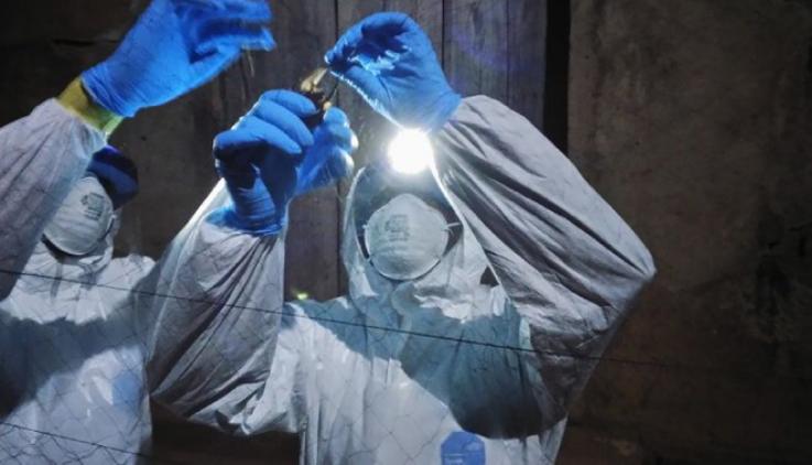 智利媒体闹乌龙 把百万N95口罩说成呼吸机 智利确诊病例10507例!