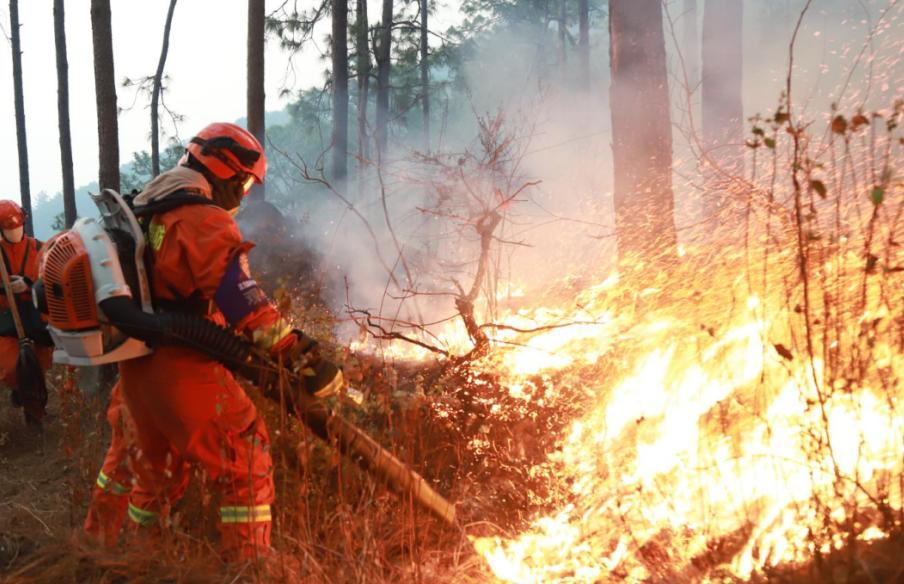Comunidad chinos :donaron 50 toneladas de materiales a la zona más afectada por el fuego en la historia de Chile.